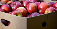Яблоки в ящике на рынке