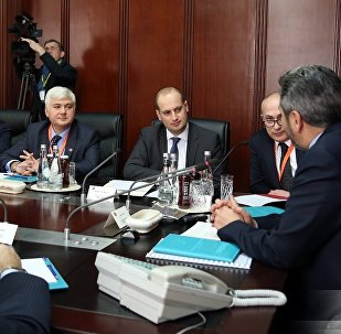 საქართველოს საგარეო საქმეთა მინისტრი მიხეილ ჯანელიძე თურქეთის პარლამენტის ვიცე-სპიკერთან, აჰმეთ აიდინთან შეხვედრაზე