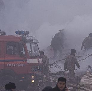 Пожар на месте падения грузового самолета под Бишкеком тушили 16 пожарных расчетов.