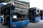 Новые синие автобусы, которые будут совершать регулярные рейсы между Вокзальной площадью и Тбилисским аэропортом