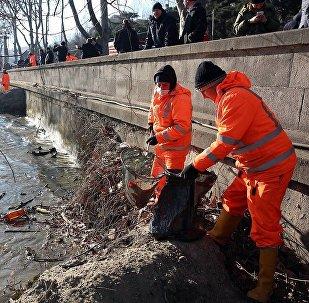Очистка русла Куры в Тбилиси