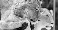 ირინა ბუგრიმოვა ლომებთან ერთად