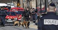 პოლიცია დამნაშავის დაკავებისას