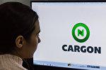 Девушка смотрит на сайт стартапа, связанного с логистикой грузоперевозок