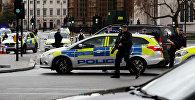 ლონდონის პოლიცია უესტმინსტერის ხიდთან