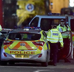 პოლიციისა და საგანგებო სიტუაციების სამსახურის თანამშრომლები ინციდენტის ადგილზე ლონდონში პარლამენტის შენობასთან