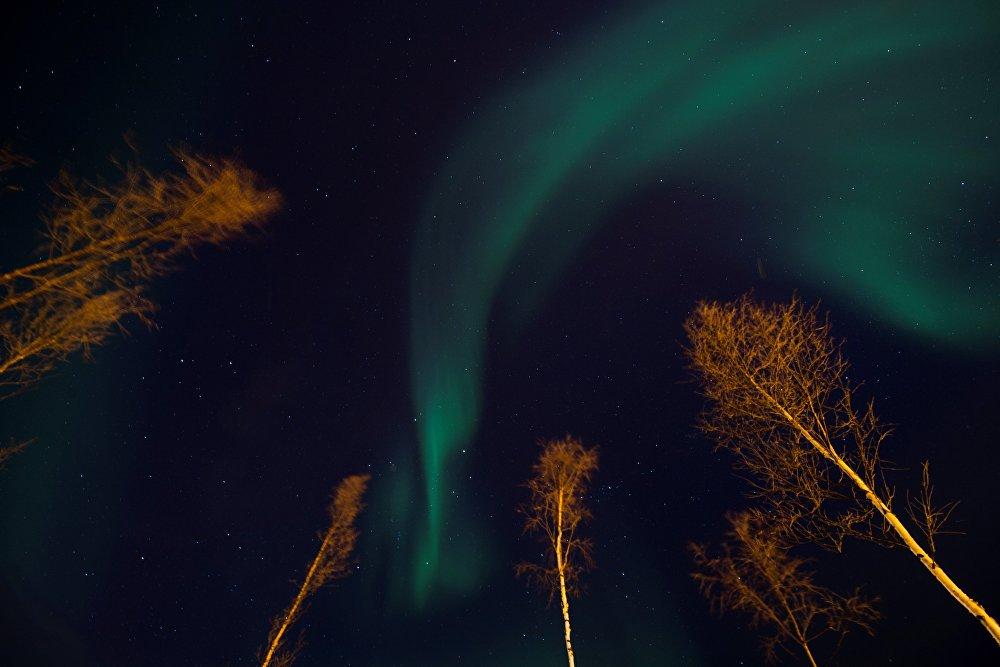 ჩრდილოეთის ნატება ალტას ღამის ცას ანათებს, ჩრდილოეთ ნორვეგია