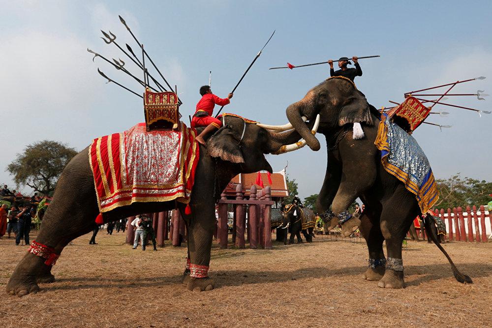 სპილოზე ამხედრებული ტაილანდელები სპილოს დღისადმი მიძღვნილ ცერემონიაზე