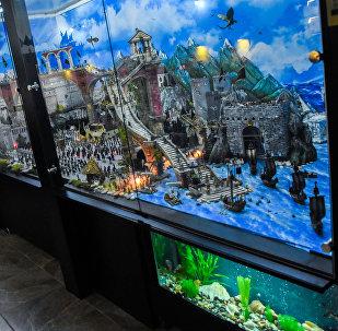 Музей оловянных солдатиков в Тбилиси:  кадры уникальных экспонатов