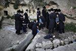 Ультраортодоксальные евреи в Иерусалиме собирают воду из горного источника, которая будет использоваться для выпечки пресного хлеба