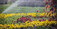 Автоматические системы поливают цветы в парке Рике
