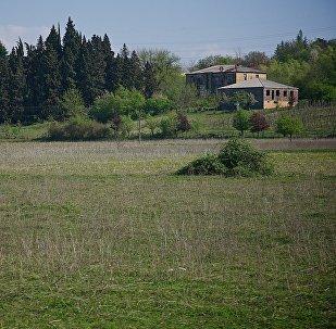 სოფელი შამგონა
