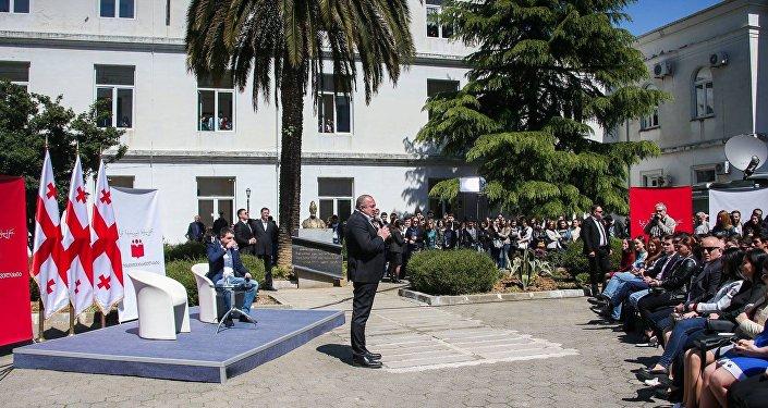 Необходимо провести референдум обизменении конституции— Оппозиция Грузии