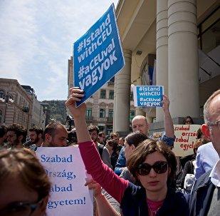 Сторонники и противники политики властей Венгрии митинговали в Тбилиси из-за ситуации с университетом Сороса