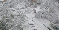 Ситуация в Кишиневе 21/04/2017, Московский проспект