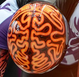 სპორტსმენი ჯონ ფერბერნი ადამიანის თავის ტვინის გამოსახულებიანი მუზარადით