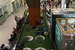 Как туристы ждут своих рейсов в Тбилисском Международном аэропорту