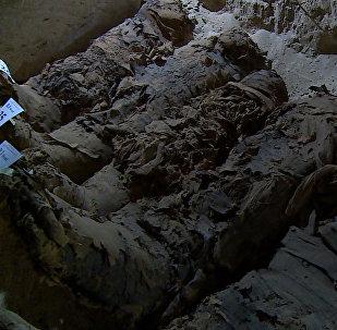 Археологи нашли в Египте 17 мумий
