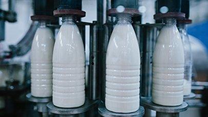 Молочная продукция, фото из архива