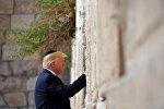 Дональд Трамп стал первым действующим президентом США, побывавшим в Храме Гроба Господня и у Стены Плача в Иерусалиме, а также прикоснувшимся к святыням христианства и иудаизма. Во время своего визита в Израиль Трамп в черной кипе поместил свернутый клочок бумаги в щель в Западной Стене, куда иудеи вкладывают молитвенные записки