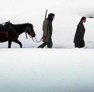 Кадр из фильма Динола