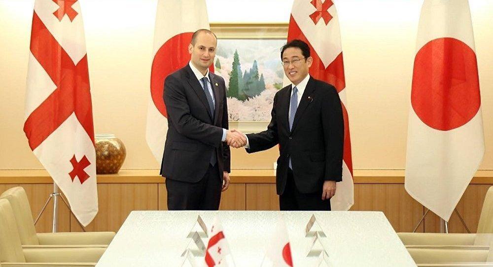 Грузия иЯпония наладят инвестиционное сотрудничество