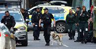 Офицеры полиции на месте террористического нападения в Лондоне, где машина врезалась в людей