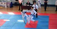 Сотни спортсменов приняли участие в международном чемпионате и семинаре по шотокан каратэ-до в Батуми
