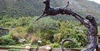 კირსტენბოშის ეროვნული ბოტანიკური ბაღი
