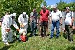 Обработка сельскохозяйственных земель против мраморных клопов