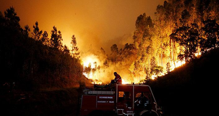 Пожарные на лесном пожаре в центральной Португалии