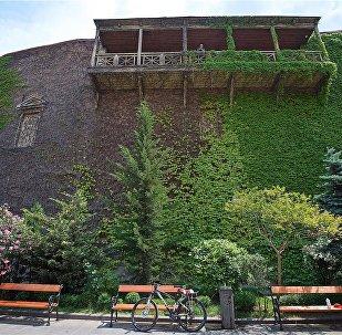 Живая стена на одном из домов в историческом центре Тбилиси