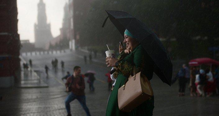 Погода в гамбурге 14 дней от гидрометцентра