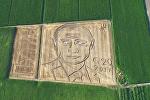 Как итальянский фермер нарисовал портрет Путина на поле