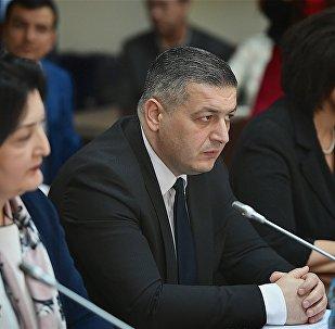 ქართველი დეპუტატების შეხვედრები რუსეთის სახელმწიფო სათათბიროში