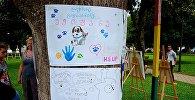 Ударим экологией по туризму: творческий фестиваль Аргани в Батуми