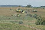 Крупные учения НАТО проходят в Румынии: кадры военных маневров