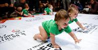 """Diaper Derby, ანუ """"საფენების შეჯიბრება"""" ნიუ-იორკში"""
