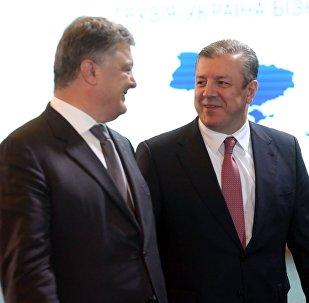 Президент Украины Петр Порошенко и премьер Грузии Георгий Квирикашвили