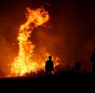 Пожарные работают над тушением лесного пожара рядом с деревней Макао, недалеко от Кастело Бранко, Португалия