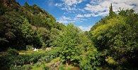 Вид на аллеи тбилисского Ботанического сада в разгар лета