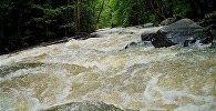 Протекающая по ущелью речка