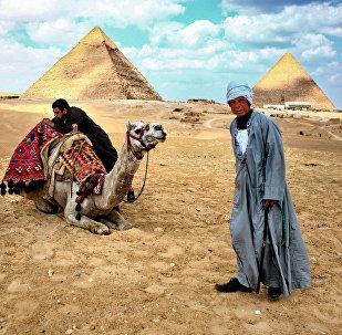 Местные жители стоят у пирамид в Гизе, 2011 год