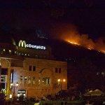 В настоящее время уточняется площадь лесного массива, пострадавшего от огня