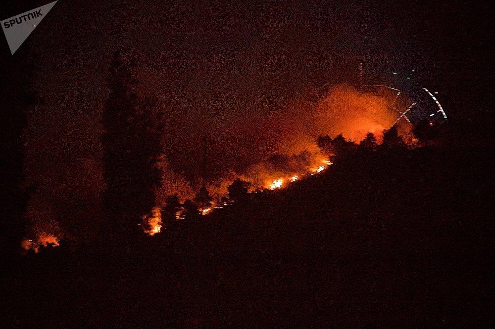 В парке Мтацминда, расположенном на вершине горы и в непосредственной близости от опасной зоны, была проведена эвакуация