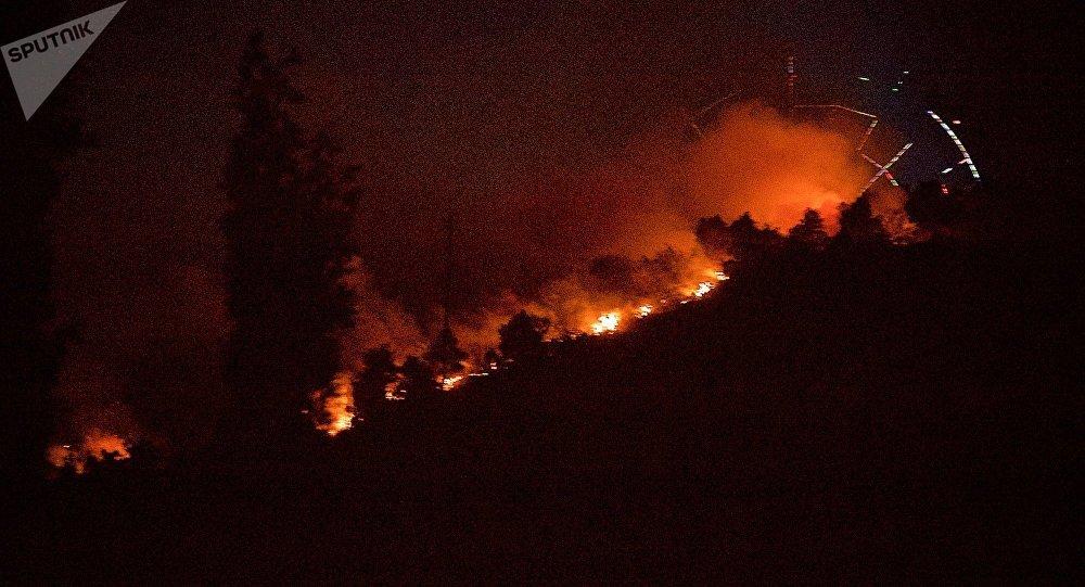 Гостей  парка Мтацминда вцентре Тбилиси эвакуировали из-за пожара