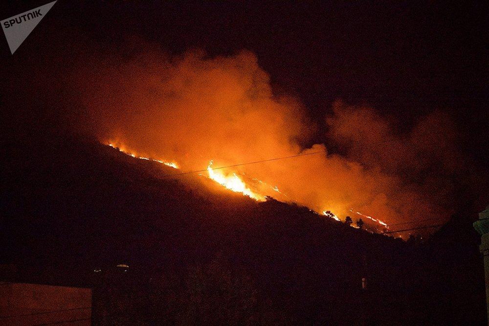 Значительный участок лесного массива на горе Мтацминда оказался охвачен огнем