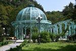 Источник с минеральной водой в Боржомском парке