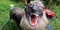 Робот-волк охраняет рисовое поле японского фермера