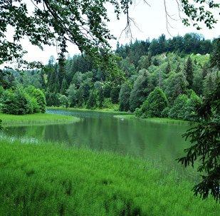 Черное озеро в горной Аджарии
